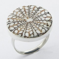 rings-silver-shell-rings