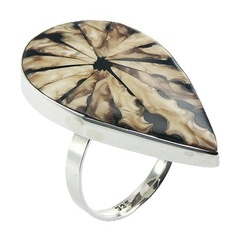 silver-shell-rings/drop-shaped-spider-shell